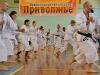 Куми Эмбу и Рандори семинар. 28-29 апреля 2012 г. Н. Новгород