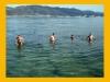 7-8 ноября. Черное море. Купание....